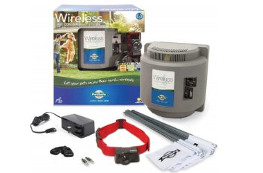 PetSafe Wireless dog main