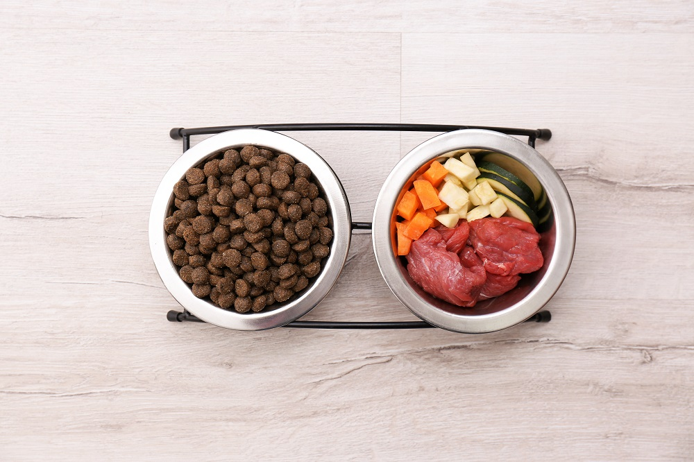 Bowls with dry and natural dog food